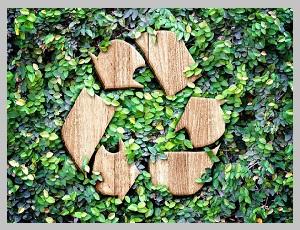 Больше сырья – меньше вреда для экологии